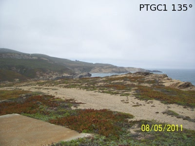 PTGC1 - Photo is not in real-time and is not updated